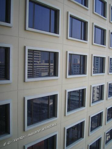 """Square"" Windows"