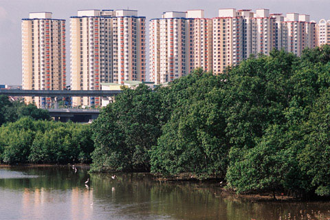 Fernvale HDB, shot from Anchorvale