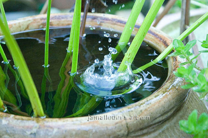 A drop of water....