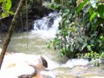 045_Cameron_Highlands_Robinson_Waterfall.JPG