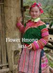 14355Flower_Hmong_lass_copy.jpg