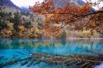 China_5ColorLake_20091021-115a.JPG