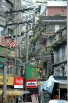 Day_6_-_Street_of_Beitou-800.jpg