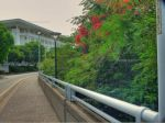 Path_to_Parl_HDR_1_.jpg