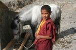 12_Rizong_Monk_with_horse.jpg
