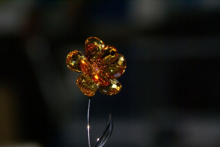 Amber crystal with flash