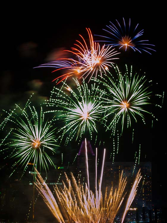 Colorful Flowers (Fireworks)